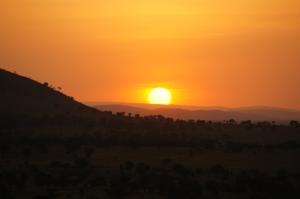 Serengeti National Park, Tanzania. 2012
