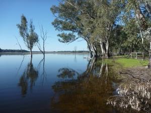Barmah Lakes. Victoria, Australia.